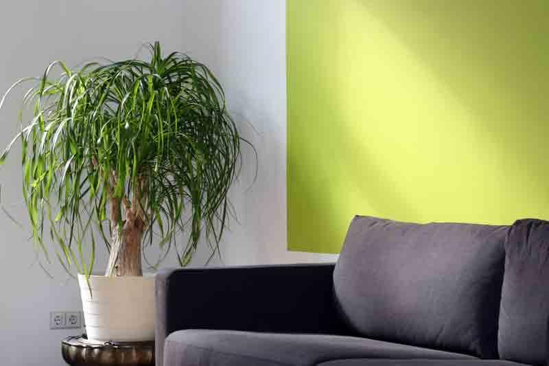 Minimalist style in furniture design industry