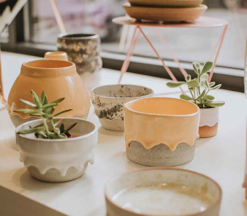 How to Decorate your Room with Plants?